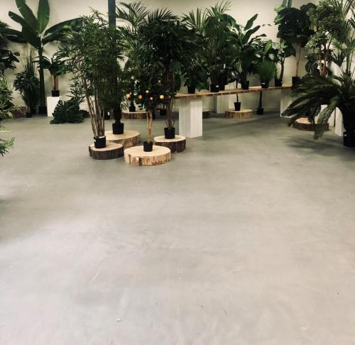 Showroom Microcement Eco Wood 2K
